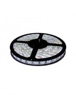CINTA LED 12V 5050 LUZ BLANCA FRIA